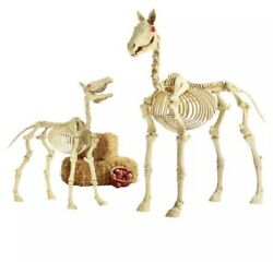6 Ft Life Size Standing Skeleton Horse And Pony Set Halloween Prop Can Ship
