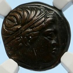 Macedonia Of Philip Ii Ancient Old Greek Coin Apollo Olympic Horse Ngc I95635
