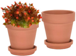8 Inch Clay Pot For Plant With Saucer - 2 Pack Large Terra Cotta Plant Pot With