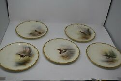 Royal Doulton Bird Plates Hand Painted Artist Signed J H Plant Set Of 5