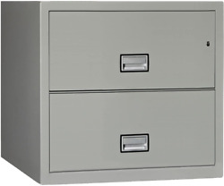 Phoenix Lateral 31 Inch 2-drawer Fireproof File Cabinet With Lock Water Seal G