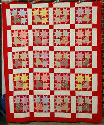 Gorgeous Vintage 30and039s Potted Star Flower Carolina Lily Antique Quilt Nice Red