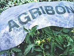 Agribon Ag-19 Floating Row Crop Cover / Frost Blanket / Garden Fabric Cover