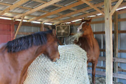 Slow Horse Hay Round Bale Net Feeder Save Eliminates Waste Fits 4and039 X 5and039 Bales