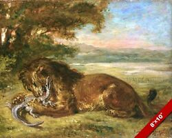 LION FIGHTING EATING KILLING YOUNG ALLIGATOR PAINTING ART REAL CANVAS PRINT