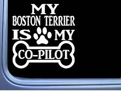 ThatLilCabin - MY BOSTON TERRIER IS MY COPILOT 6