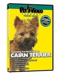everything you should know cairn terrier Ex-library