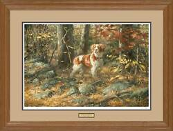Stone Wall Brittany - Dog Framed Limited Edition Print By Robert Abbett