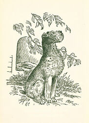 Dog Book 1956 Wire Fox Terrier Story BLINKIE by Beth Brown First Ed SCARCE