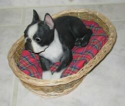 Awesome Sandicast Boston Terrier 9.5