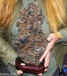 Superb * Huge Wolframite Mineral on Wooden Stand 5.280Kgs 11 Lbs COLLETOR PIECE