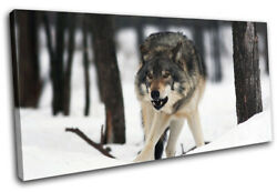 White Wolf Wild Snowy Woods Animals Single Canvas Wall Art Picture Print