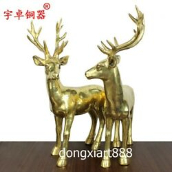 48 Cm Chinese Pure Brass Sika Deer Cervus Plum Blossom Fengshui Animal Statue