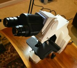 Nikon Eclipse E400 Microscope With Ergo Head And 4 Plan Objectives