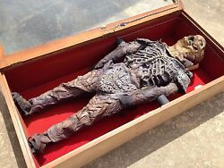 Area 51 Syfy Channel Alien Prop With Containment Case