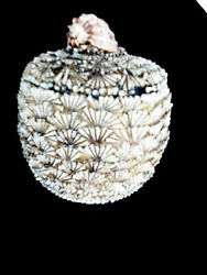 Anthony Redmile Shell Covered Cookie Jar Dish