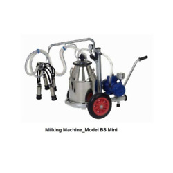 Automatic Bs Mini Milking Machine Can Capacity