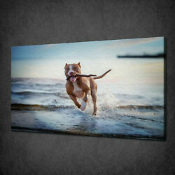 ENGLISH TERRIER RUNNING ON THE BEACH CANVAS WALL ART PRINT PICTURE READY TO HANG
