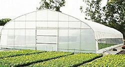 Agfabric 3.1mil Clear Plastic Film Polyethylene Covering For Greenhouse,12x25ft