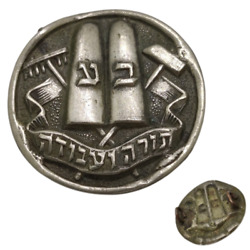 Israel Religious Zionist Youth Movment Bne-akiva Old And Rare Mini Badge Pin