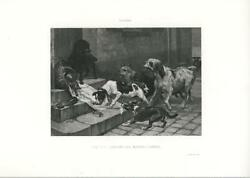 ANTIQUE BLACK POODLE PIT BULL JACK RUSSELL TERRIER DOG MASTER'S DINNER ART PRINT