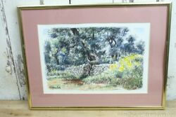 Signed Italian Drawing Charcoal Stone Wall Trees Yellow Flowers Framed Rinaldi