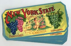 50 Cupid Brand New York Grape Crate Labels, Wholesale, Finger Lakes