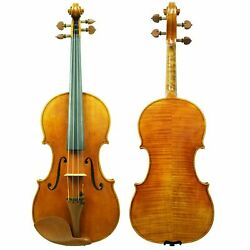 West Coast Strings Sandro Luciano 4/4 And 7/8 Violin