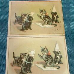 Rare A J Fouch Kitten Teaching Class Pupil With Dunce Hat 1880s Trade Card