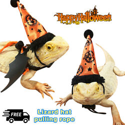 Halloween Outdoor Pet Cone Hat Festival Costume for Bearded Dragon Lizard Hot