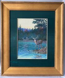 Original White Tail Deer Painting By Allan Brooks Used For 1930 Calendar