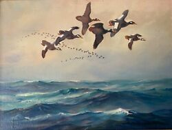 Original Oil Painting Of White Wing Scoter Duck Decoy By Frank Vining Smith