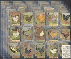 Spratts-full Set- Poultry Series K100 Cards - All Scanned