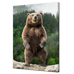 Big Brown Bear Standing In The Forest Animal Canvas Print Wall Art Picture