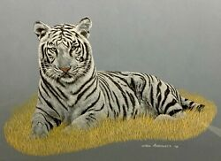 Rod Arbogast 20th C. American Wildlife Painting White Bengal Tiger Tiger King