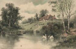 Vintage White Swans On River And Thatched Farmhouse Postcard Sent To Douglas Iom