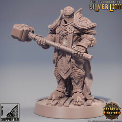 3D Printed Mini For Knight Paladin Fighter Warrior Cleric Dnd Damp;d Dungeons $9.99