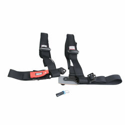 Simpson Performance Products D3 Bolt-in Safety Harness With Pads 3 Driver Side
