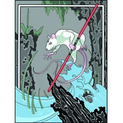 Lord Squeaks By Paul Gobet Japanese White Rat Mouse Saber Canvas Fine Art Print