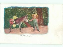 Pre-linen Boy With Donkey Mule Is Young Prospector Ac1213