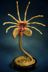 Colle57624 Aliens Facehugger Life Size Replica