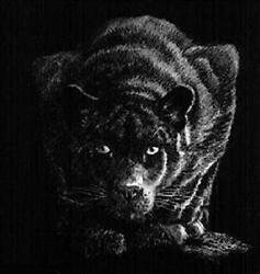 John Seerey-lester Out Of The Darkness Canvas Giclee