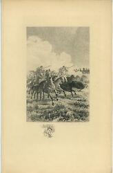 Antique Horse Colt Riding Wind Cow Steer Equestrian Old Remarque Etching Print