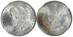 1878 Morgan Silver Dollar 7/8 Tail Feathers Weak Ngc Ms-63 Rainbow Toned