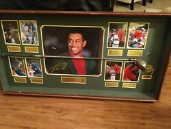 Tiger Woods Commemorative 1997 Cobra Driver Display Limited Edition Golf Record