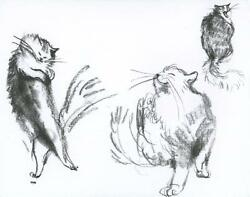Cat Cats Fluffy Fur Playing Yawning Primitive Naive Folk Art Blank Note Card