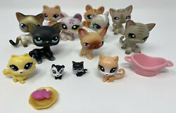 LPS Lot of 16 LITTLEST PET SHOP Cats Siamese Black Cat Blue Eyes Fish Plate Bed