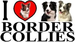 I LOVE BORDER COLLIES Car Sticker By Starprint Featuring the Border Collie
