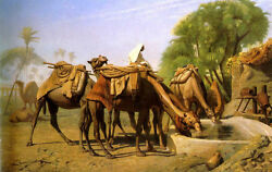 Oil painting Jean-Leon Gerom Camels at the Trough Ship of the desert Drink water