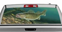 Truck Rear Window Decal Graphic [fishing / Eye Candy] 20x65in Dc77508